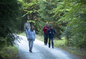 Бродим по дорожкам в Баварском лесу