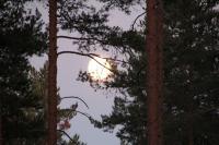 Июльские родео-сборы, Финляндия(Лиекса). Полнолуние